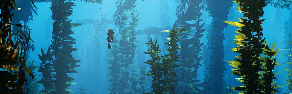 Carnet rose - Les créateurs de Depth annoncent King Tide, un battle royale sous-marin