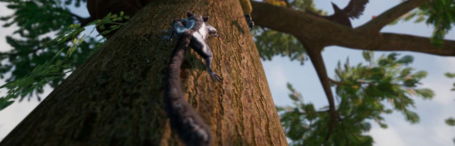 Le jeu de survie animalier AWAY : The Survival Series lance son Kickstarter