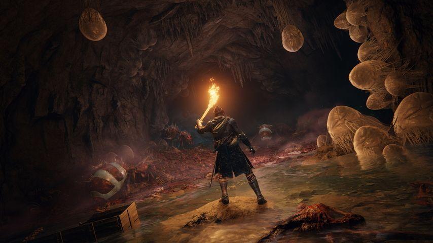Le plein d'infos sur Elden Ring, «le plus grand jeu FromSoftware jamais réalisé» selon Miyazaki – Actu