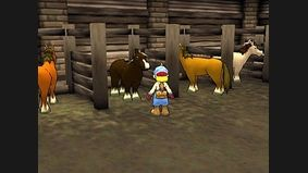 Harvest Moon : Save The Homeland