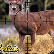 Cabela's Deer Hunt : 2004 Season