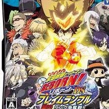 Hitman Reborn ! DS : Ring Struggle