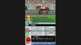Derby Stallion DS
