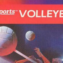 RealSports Volleyball