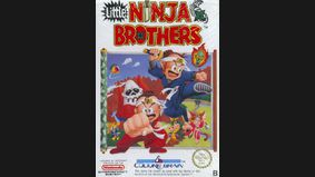 Little Ninja Brothers