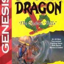 Double Dragon V : The Shadow Falls