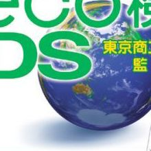 Eco Kentei DS