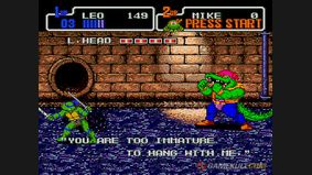 Teenage Mutant Hero Turtles : The HyperStone Heist