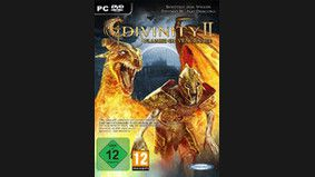 Divinity II : Flames of Vengeance