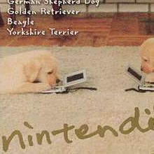 Nintendogs : Best Friends
