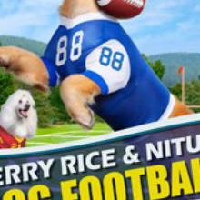 Jerry & Nitus : Dog Football