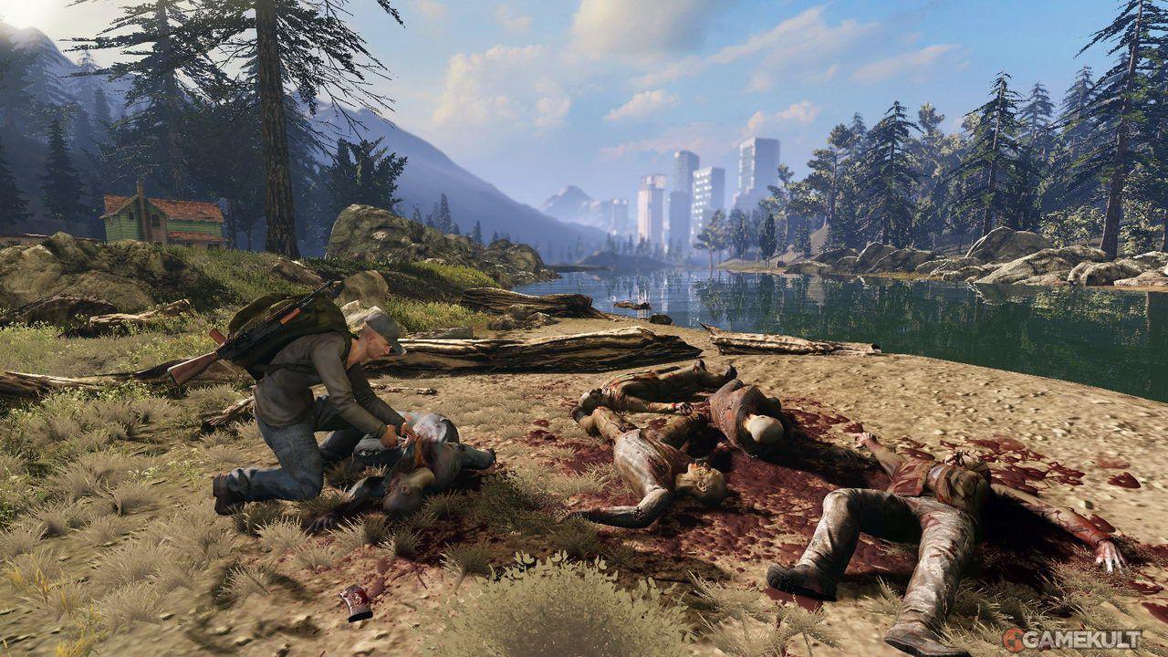 Les environnements du jeu sont assez jolis.