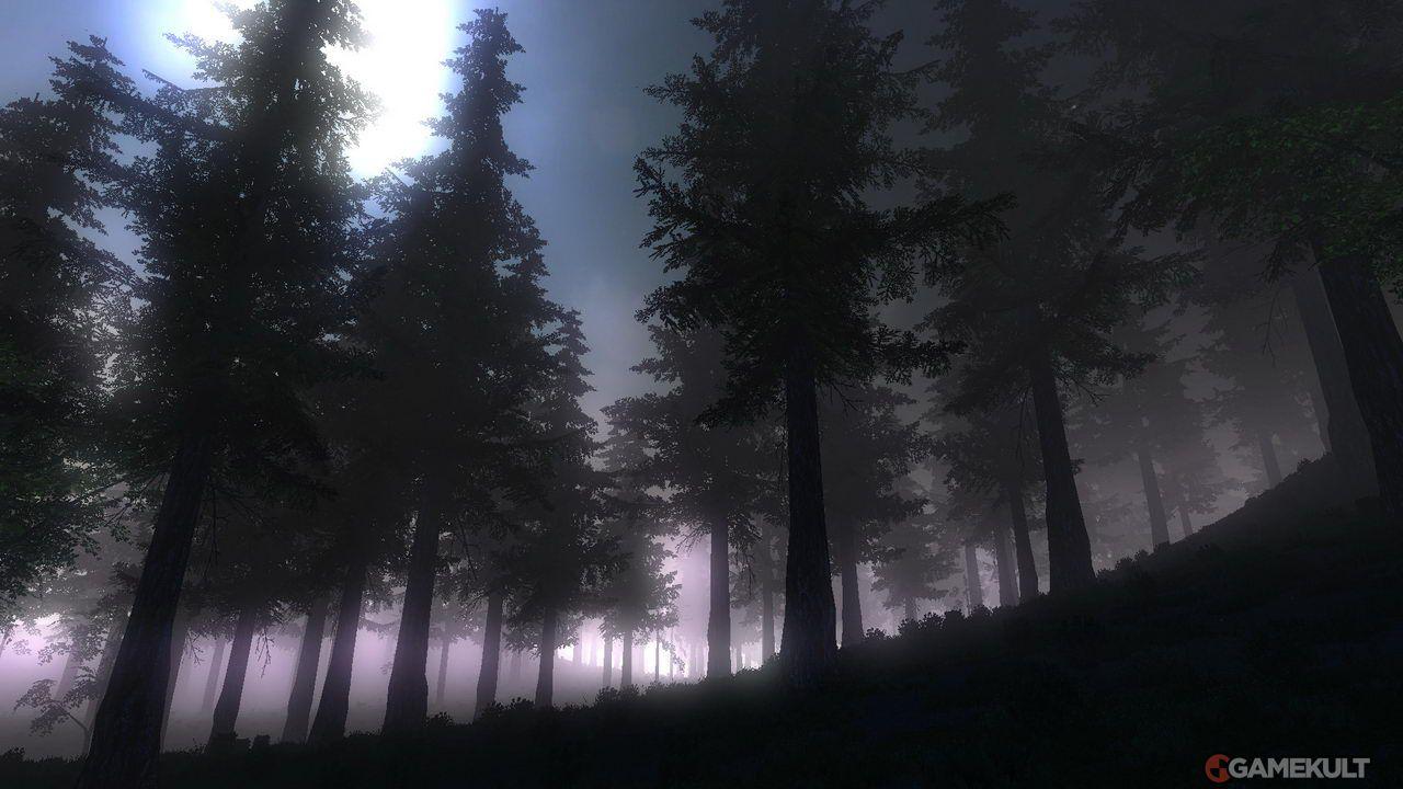 Explorer le monde de nuit est bien flippant... mais vous êtes moins visible que de jour.