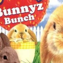 Petz : Bunnyz Bunch