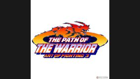 The Path of The Warrior : Art of Fighting 3