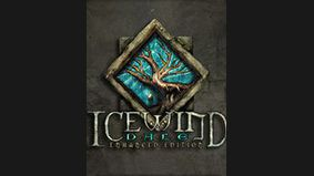 Icewind Dale : Enhanced Edition