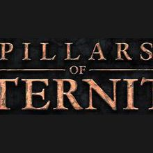 Test : Pillars of Eternity
