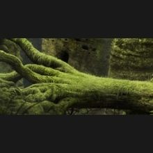 Test : Samorost 3